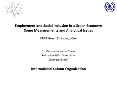 Employment and Social Inclusion in a Green Economy: Some Measurements and Analytical Issues UNEP Green Economy Week Dr. Moustapha Kamal Gueye Policy Specialist,