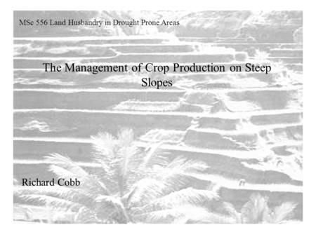 The Management of Crop Production on Steep Slopes MSc 556 Land Husbandry in Drought Prone Areas Richard Cobb.
