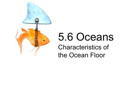 5.6 Oceans Characteristics of the Ocean Floor. 5.6a-c The student will investigate and understand characteristics of the ocean environment.