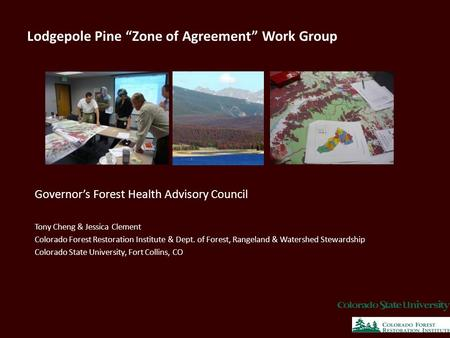"Lodgepole Pine ""Zone of Agreement"" Work Group Governor's Forest Health Advisory Council Tony Cheng & Jessica Clement Colorado Forest Restoration Institute."