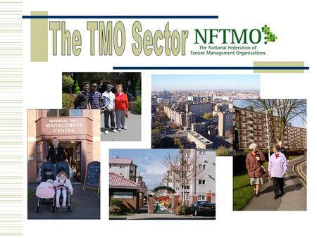 ITDS – January 2010. The TMO Model Council or RSL TMO Services to tenants (tenancy rights not affected) Tenants Are members Management Agreement Organisation.