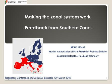 Making the zonal system work -Feedback from Southern Zone-