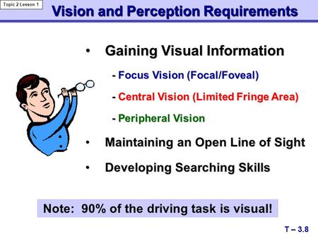 Gaining Visual InformationGaining Visual Information - Focus Vision (Focal/Foveal) - Focus Vision (Focal/Foveal) - Central Vision (Limited Fringe Area)