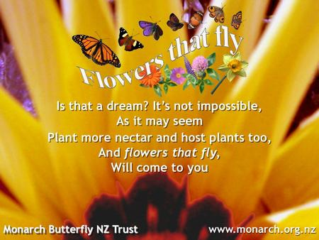 Monarch Butterfly NZ Trust www.monarch.org.nz Plant more nectar and host plants too, And flowers that fly, Will come to you Is that a dream? It's not impossible,