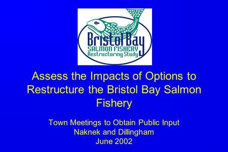 Assess the Impacts of Options to Restructure the Bristol Bay Salmon Fishery Town Meetings to Obtain Public Input Naknek and Dillingham June 2002.