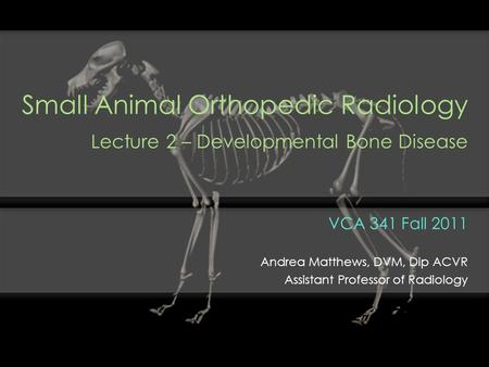 Small Animal Orthopedic Radiology Lecture 2 – Developmental Bone Disease VCA 341 Fall 2011 Andrea Matthews, DVM, Dip ACVR Assistant Professor of Radiology.