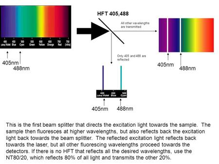HFT 405,488 488nm 405nm 488nm 405nm Only 405 and 488 are reflected All other wavelengths are transmitted 488nm 405nm This is the first beam splitter that.