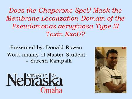 Does the Chaperone SpcU Mask the Membrane Localization Domain of the Pseudomonas aeruginosa Type III Toxin ExoU? Presented by: Donald Rowen Work mainly.