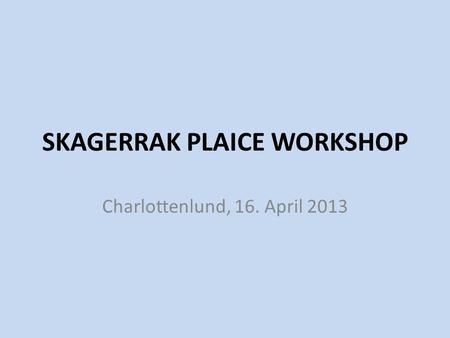 SKAGERRAK PLAICE WORKSHOP Charlottenlund, 16. April 2013.