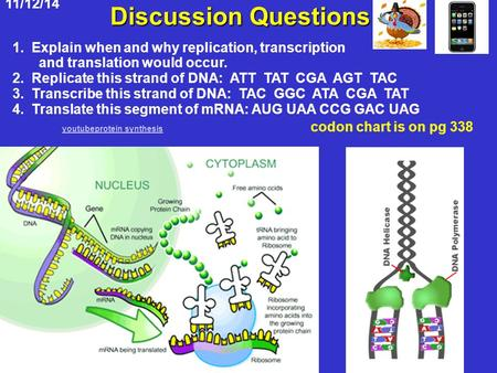 Discussion Questions youtubeprotein synthesis codon chart is on pg 338