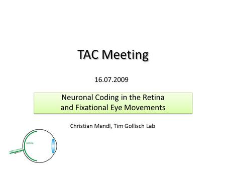 TAC Meeting Neuronal Coding in the Retina and Fixational Eye Movements Neuronal Coding in the Retina and Fixational Eye Movements 16.07.2009 Christian.