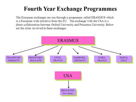 Fourth Year Exchange Programmes