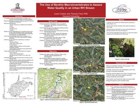 The Use of Benthic Macroinvertebrates to Assess Water Quality in an Urban WV Stream Laura Canton and Thomas Ford, PhD Concord University Brush Creek ~Originates.