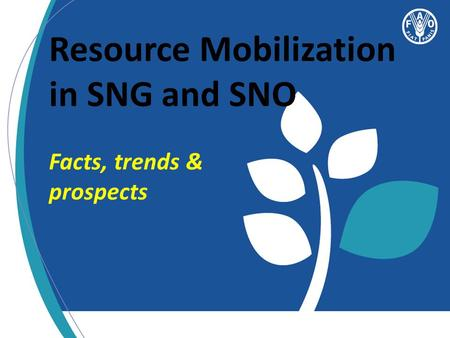 Resource Mobilization in SNG and SNO Facts, trends & prospects.