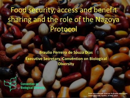Braulio Ferreira de Souza Dias Executive Secretary, Convention on Biological Diversity Food security, access and benefit sharing and the role of the Nagoya.