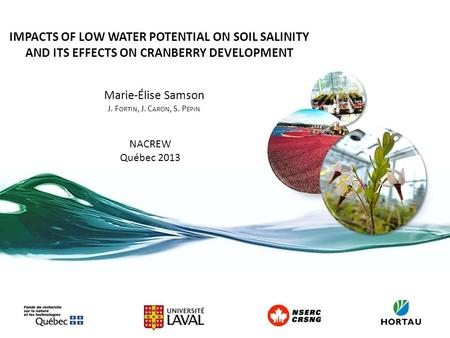 IMPACTS OF LOW WATER POTENTIAL ON SOIL SALINITY AND ITS EFFECTS ON CRANBERRY DEVELOPMENT Marie-Élise Samson J. F ORTIN, J. C ARON, S. P ÉPIN NACREW Québec.