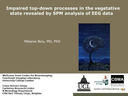 Www.comascience.org Impaired top-down processes in the vegetative state revealed by SPM analysis of EEG data Mélanie Boly, MD, PhD Wellcome Trust Centre.
