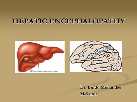 HEPATIC ENCEPHALOPATHY Dr. Bindu Mohandas M-5 unit.