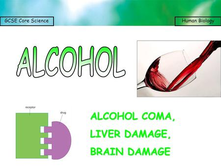 GCSE Core ScienceHuman Biology ALCOHOL COMA, LIVER DAMAGE, BRAIN DAMAGE.