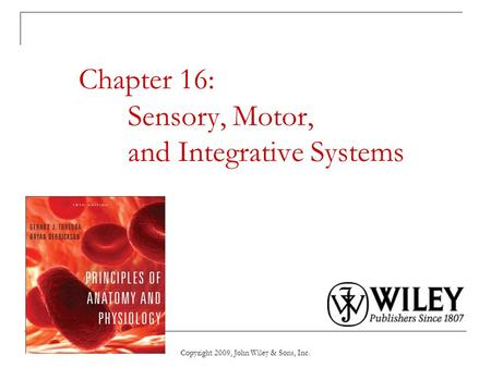 Chapter 16: Sensory, Motor, and Integrative Systems Copyright 2009, John Wiley & Sons, Inc.