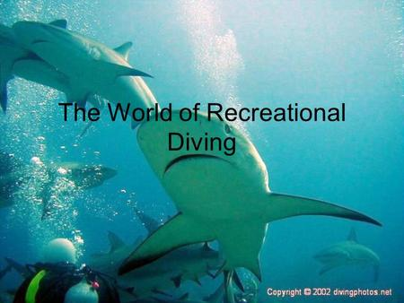 The World of Recreational Diving. SCUBA is an acronym for the S______ C______ U________ B________ A________ invented by Cousteau. Diver certification.