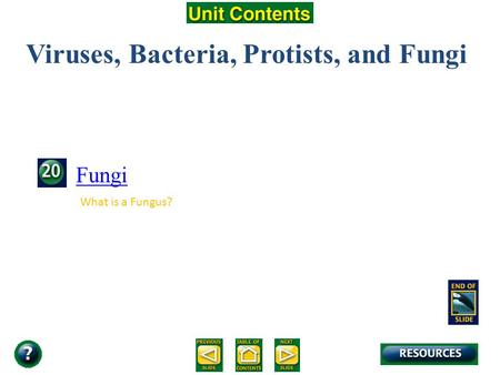 Unit Overview – pages 472-473 Viruses, Bacteria, Protists, and Fungi Fungi What is a Fungus?