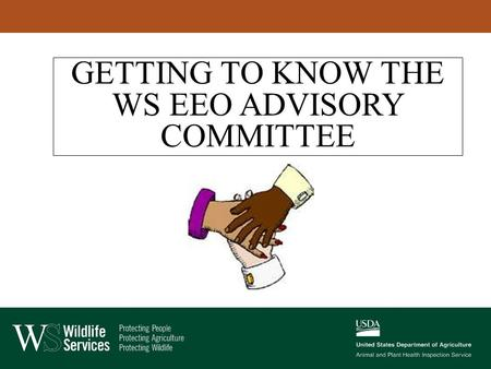 GETTING TO KNOW THE WS EEO ADVISORY COMMITTEE. WS EEO ADVISORY COMMITTEE Has 12 members Meets quarterly; once face-to-face, and three conference calls.