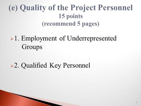  1. Employment of Underrepresented Groups  2. Qualified Key Personnel 1.