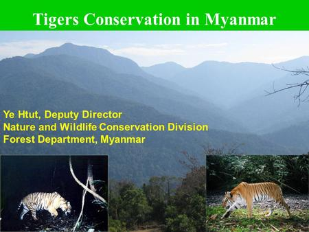 1 Tigers Conservation in Myanmar Ye Htut, Deputy Director Nature and Wildlife Conservation Division Forest Department, Myanmar.