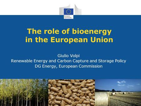 The role of bioenergy in the European Union Giulio Volpi Renewable Energy and Carbon Capture and Storage Policy DG Energy, European Commission.