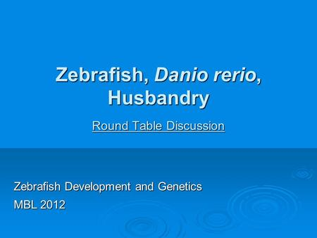 Zebrafish, Danio rerio, Husbandry Round Table Discussion Zebrafish Development and Genetics MBL 2012.