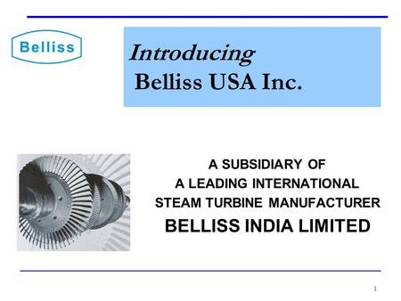 1 Introducing Belliss USA Inc. A SUBSIDIARY OF A LEADING INTERNATIONAL STEAM TURBINE MANUFACTURER BELLISS INDIA LIMITED.