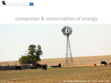 Conversion & conservation of energy living with the lab © David Hall 2013 windmill pumping water for cows – west Texas.