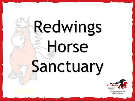 Redwings Horse Sanctuary. So, you're visiting… Redwings Ada Cole!