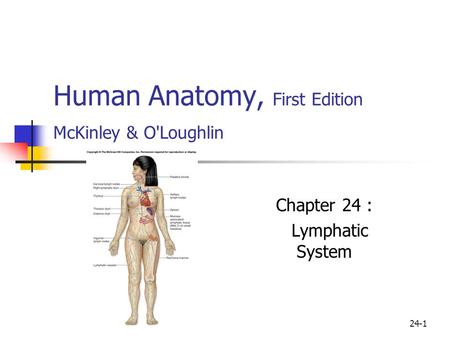 24-1 Human Anatomy, First Edition McKinley & O'Loughlin Chapter 24 : Lymphatic System.