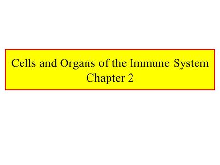Cells and Organs of the Immune System Chapter 2. Hematopoiesis HSC (Hematopoietic Stem Cell) –Reside in Bone Marrow –Pluripotent –1 HSC Per 50,000 BM.
