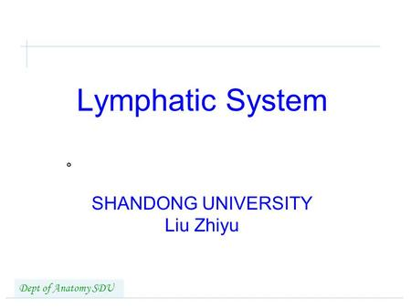 Lymphatic System SHANDONG UNIVERSITY Liu Zhiyu