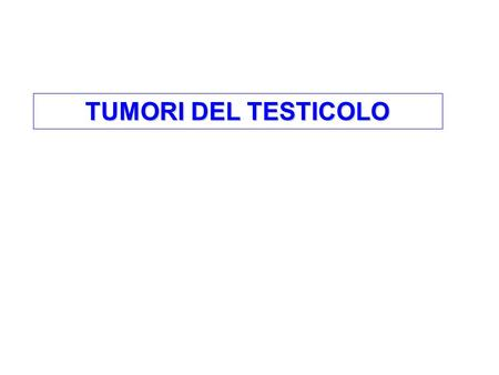 TUMORI DEL TESTICOLO. Pure seminoma accounts for 47% of all testis cancer patients (50% of patients with cryptorchidism have seminoma). More than 90%