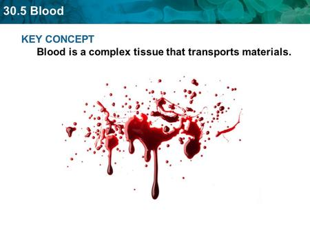 30.5 Blood KEY CONCEPT Blood is a complex tissue that transports materials.