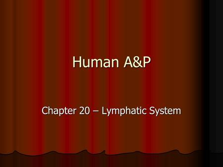 Human A&P Chapter 20 – Lymphatic System. The Lymphatic System What is the lymphatic system? What is the lymphatic system? It's composed of: It's composed.