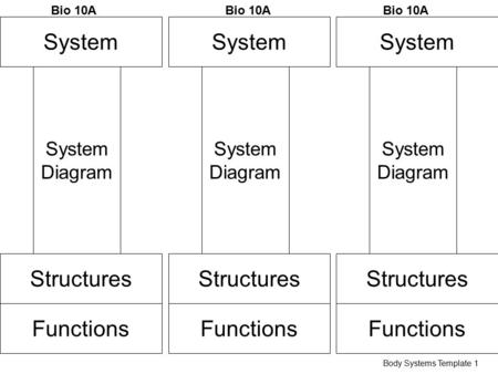 System Structures Functions System Diagram Bio 10A Body Systems Template 1 System Structures Functions System Diagram Bio 10A System Structures Functions.