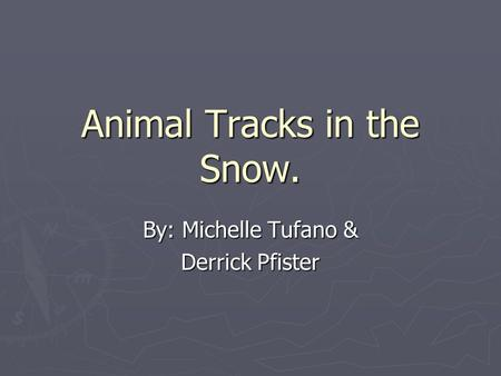 Animal Tracks in the Snow. By: Michelle Tufano & Derrick Pfister.