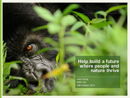 Julia Young WWF-UK 10th October 2014 Help build a future where people and nature thrive.