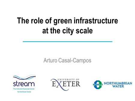 The role of green infrastructure at the city scale Arturo Casal-Campos.