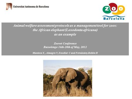 Animal welfare assessment protocols as a management tool for zoos: the African elephant (Loxodonta africana) as an example Zoovet Conference Bussolengo.