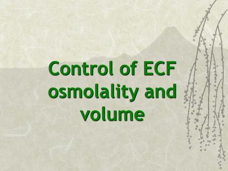 Control of ECF osmolality and volume. MAIN DIFFERENCES BETWEEN ICF AND ECF More Na + in ECF More K + in ICF More Cl - in ECF More PO 4, HCO 3, and Pr.