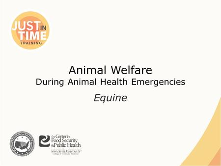 Animal Welfare During Animal Health Emergencies Equine.