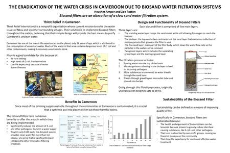 THE ERADICATION OF THE WATER CRISIS IN CAMEROON DUE TO BIOSAND WATER FILTRATION SYSTEMS Heather Amper and Zoe Patton Thirst Relief in Cameroon Thirst Relief.