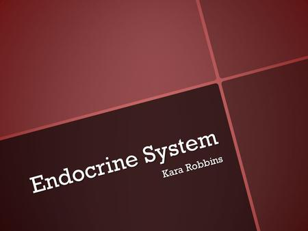 Endocrine System Kara Robbins. Function System of glands, each of which secretes different types of hormones directly into the bloodstream to maintain.