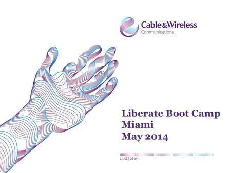 Liberate Boot Camp Miami May 2014 14-23 May. Payments L IBERATE 2Liberate Boot Camp| 14-23 May.